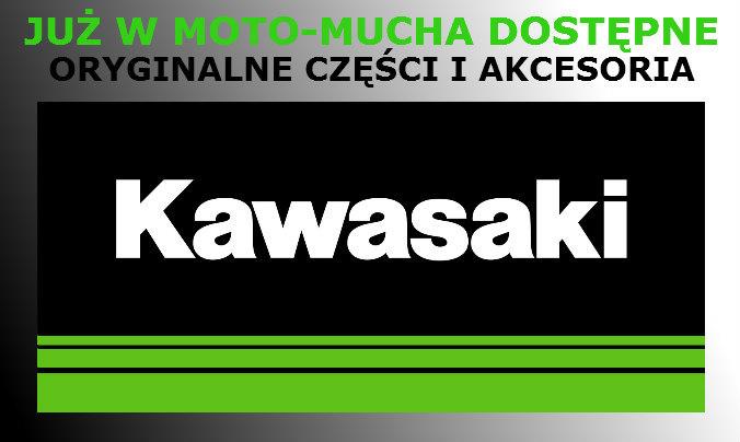 LOGO KAWASKI